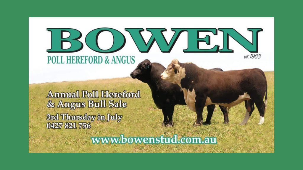 2019 BOWEN BULL SALE - Bowen Stud